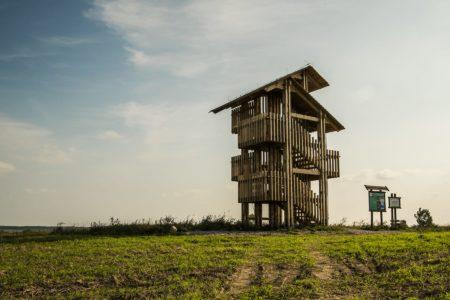 Rezerwat ptaków Łukajno