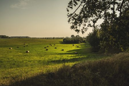 Mazurskie Krajobrazy