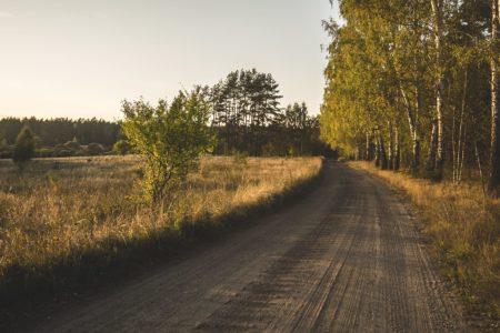 Leśna droga w okolicy wsi Buczki